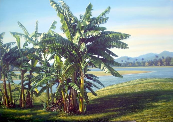 Platanos, oil on canvas
